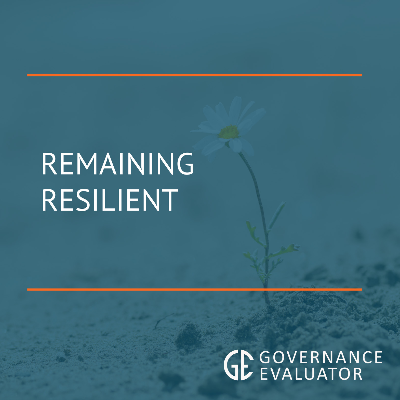 Remaining Resilient