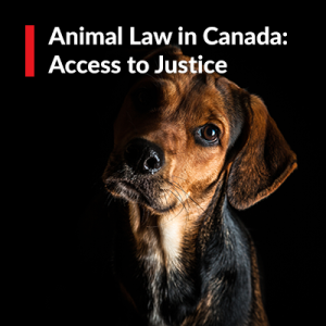 Animal Law in Canada: Access to Justice