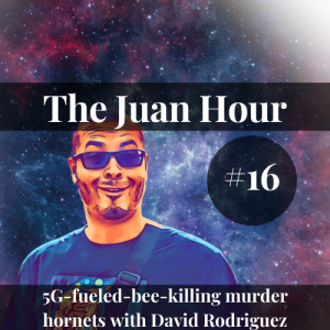 The Juan Hour #16 | 5G-fueled-bee-killing murder hornets with David Rodriguez