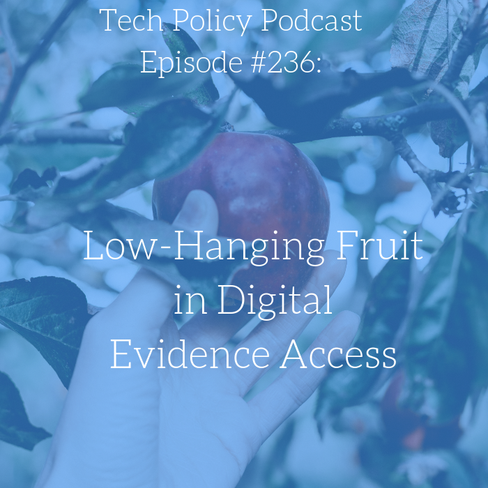 #236: Low Hanging Fruit with Professor Daskal