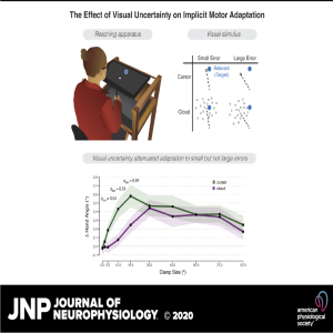 The effect of visual uncertainty on implicit motor adaptation