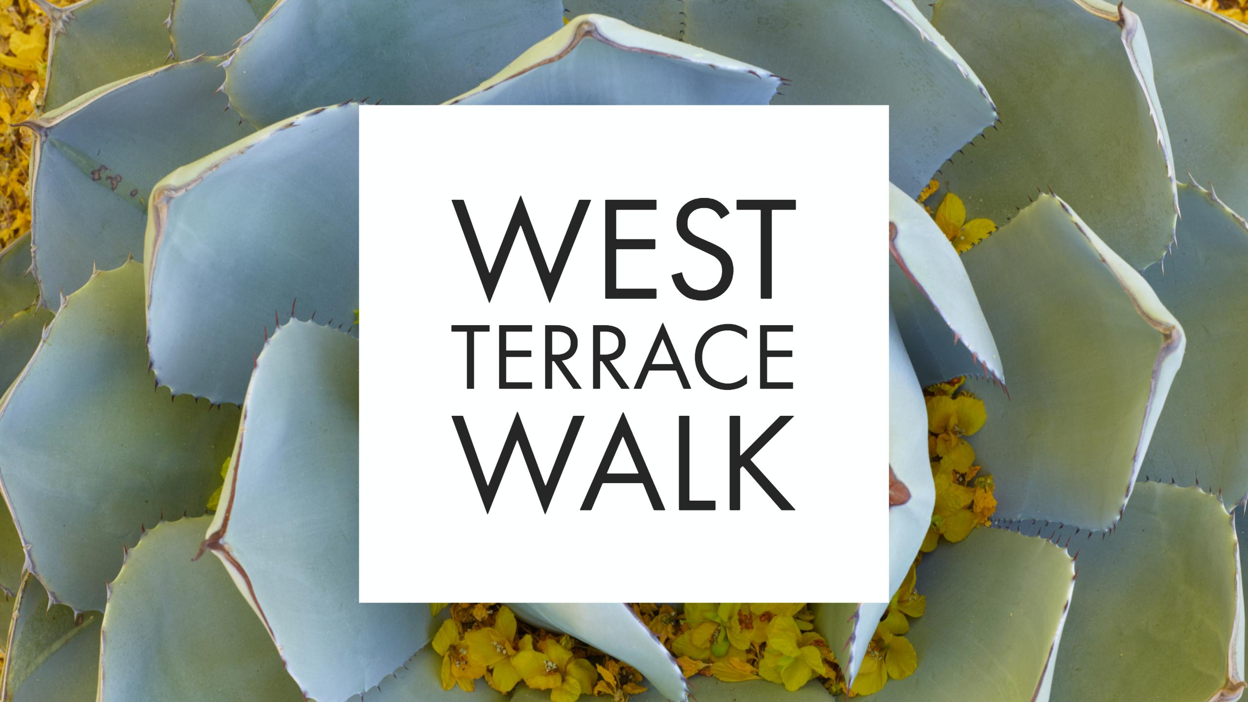 West Terrace Walk