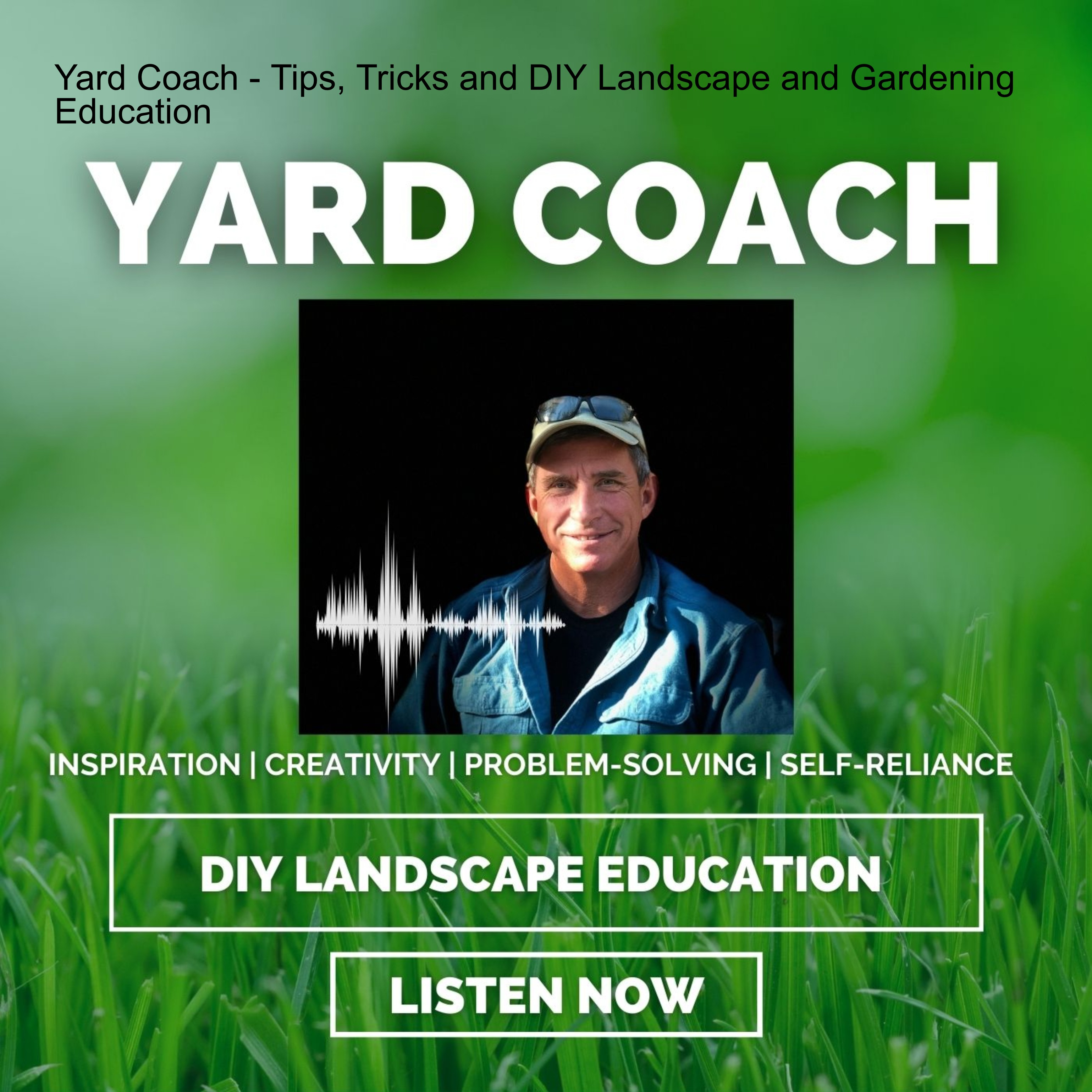 Lawn Substitutes   Hard at First, Then a lot Easier   Podcast Version