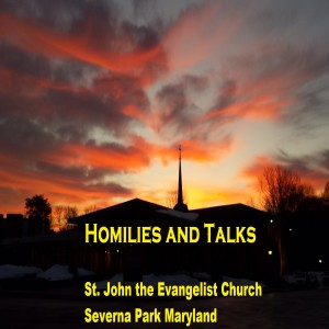 St. John's Homilies and Talks