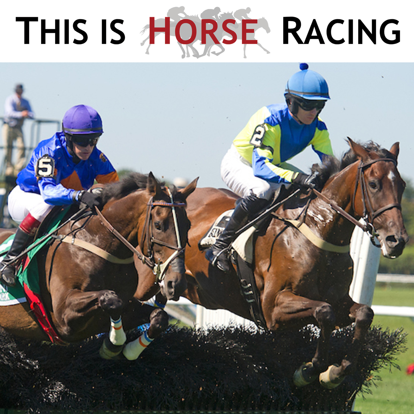 This Is Horse Racing