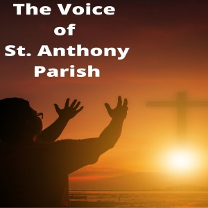 Catholic Audio Media Podcast