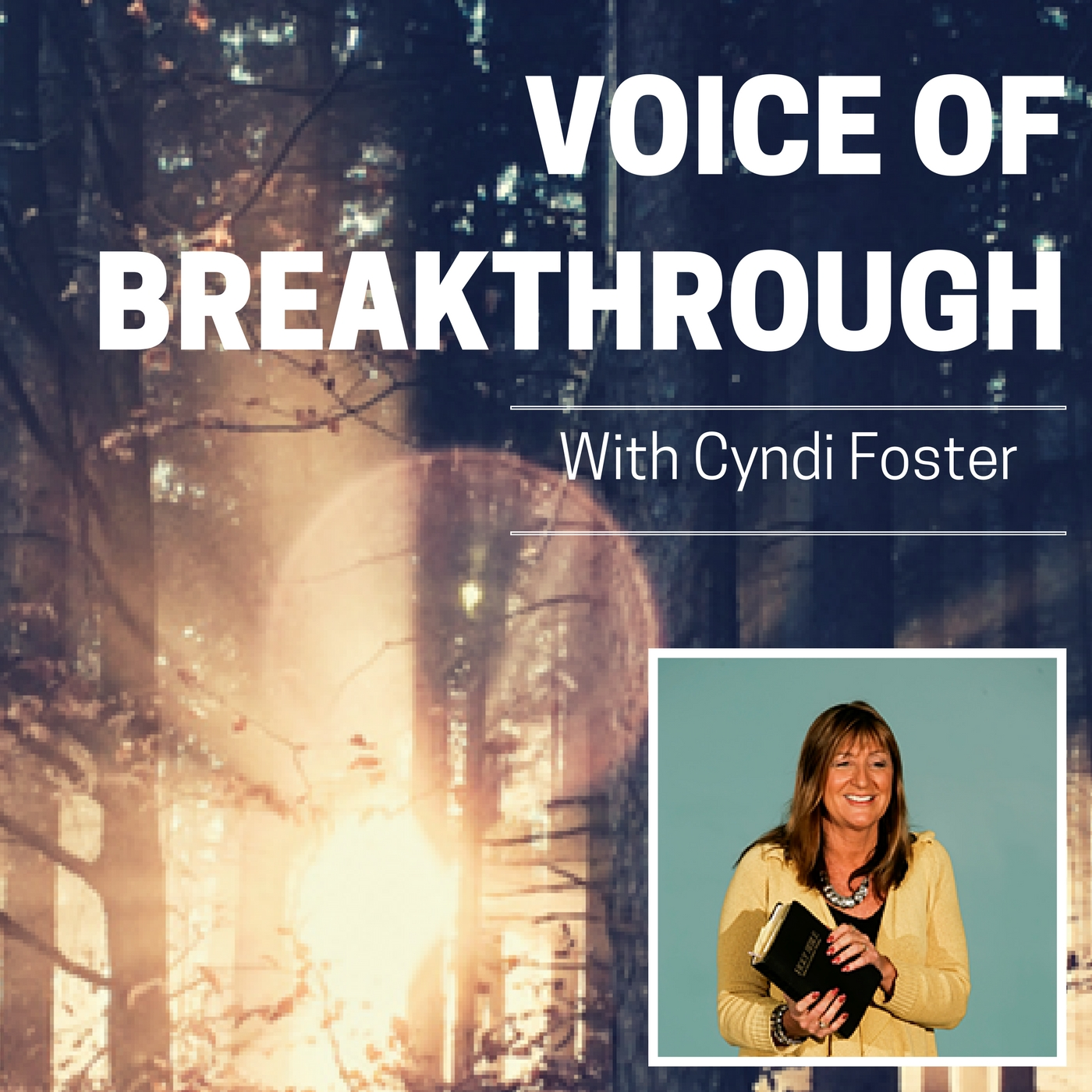 Voice of Breakthrough with Cyndi Foster