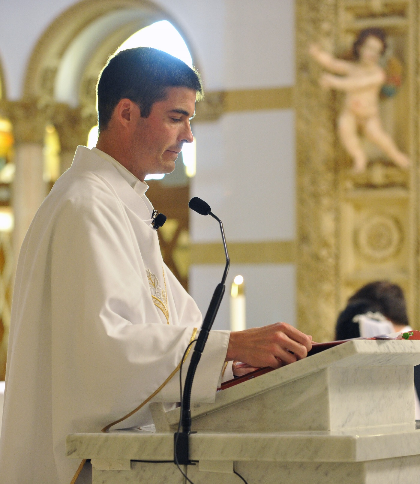 The Truth in Love:  Homilies & Reflections by Fr. Stephen Dardis