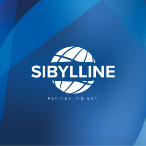 Sibylline Insight Series