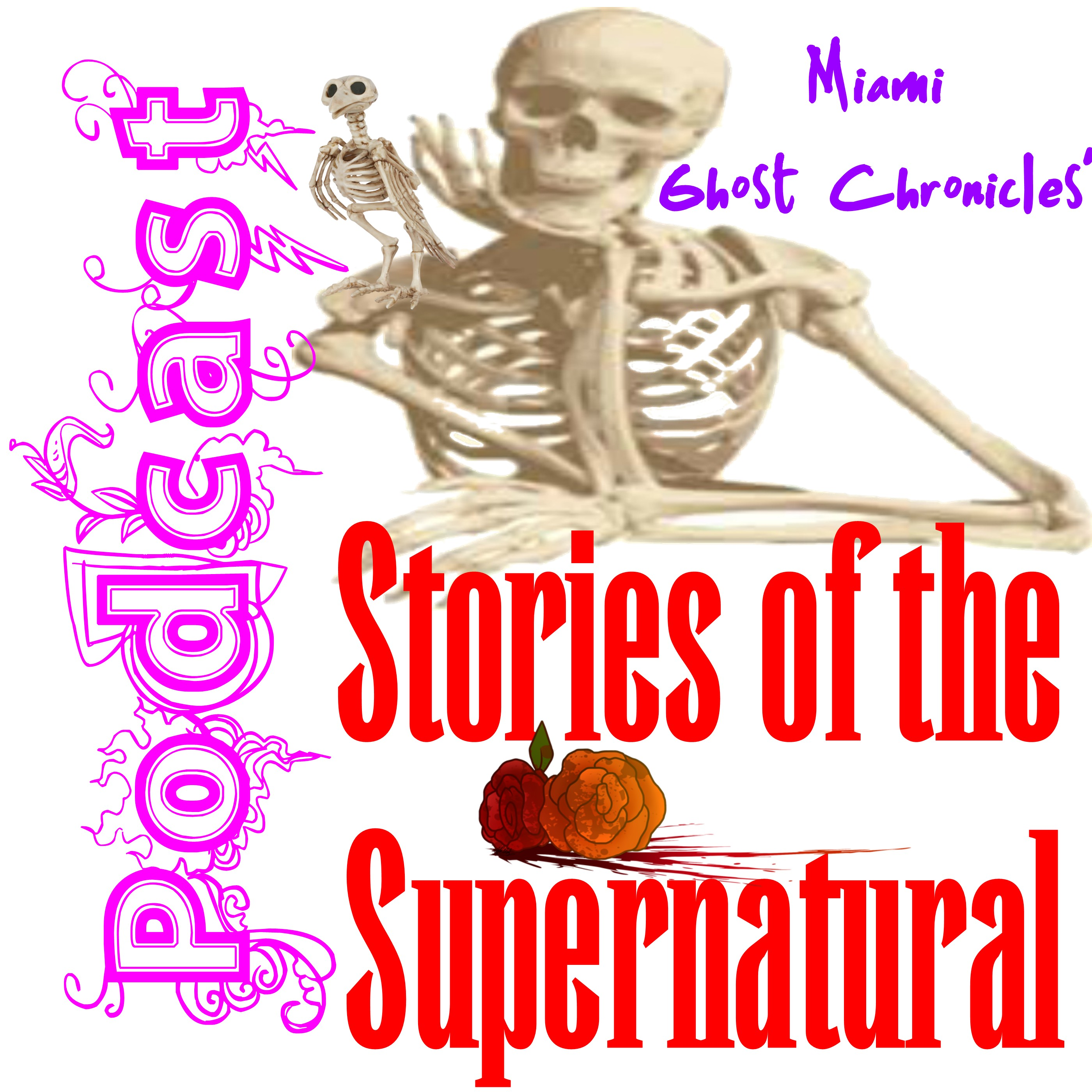 Stories of the Supernatural Podcast