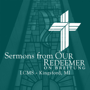 Sermons from Our Redeemer on Breitung