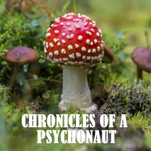 Chronicles of a Psychonaut
