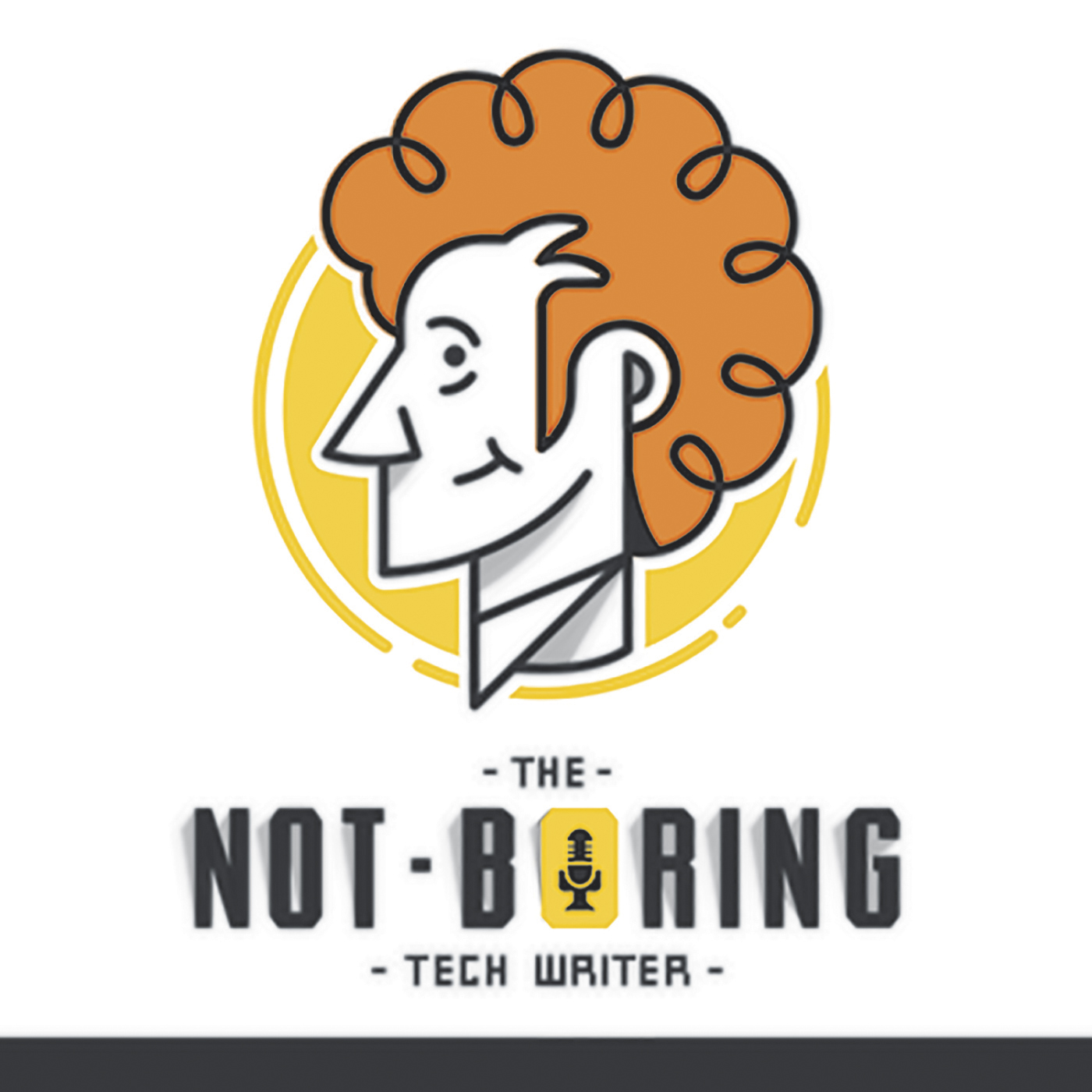 The Not Boring Tech Writer