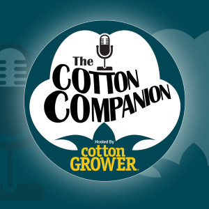 The Cotton Companion