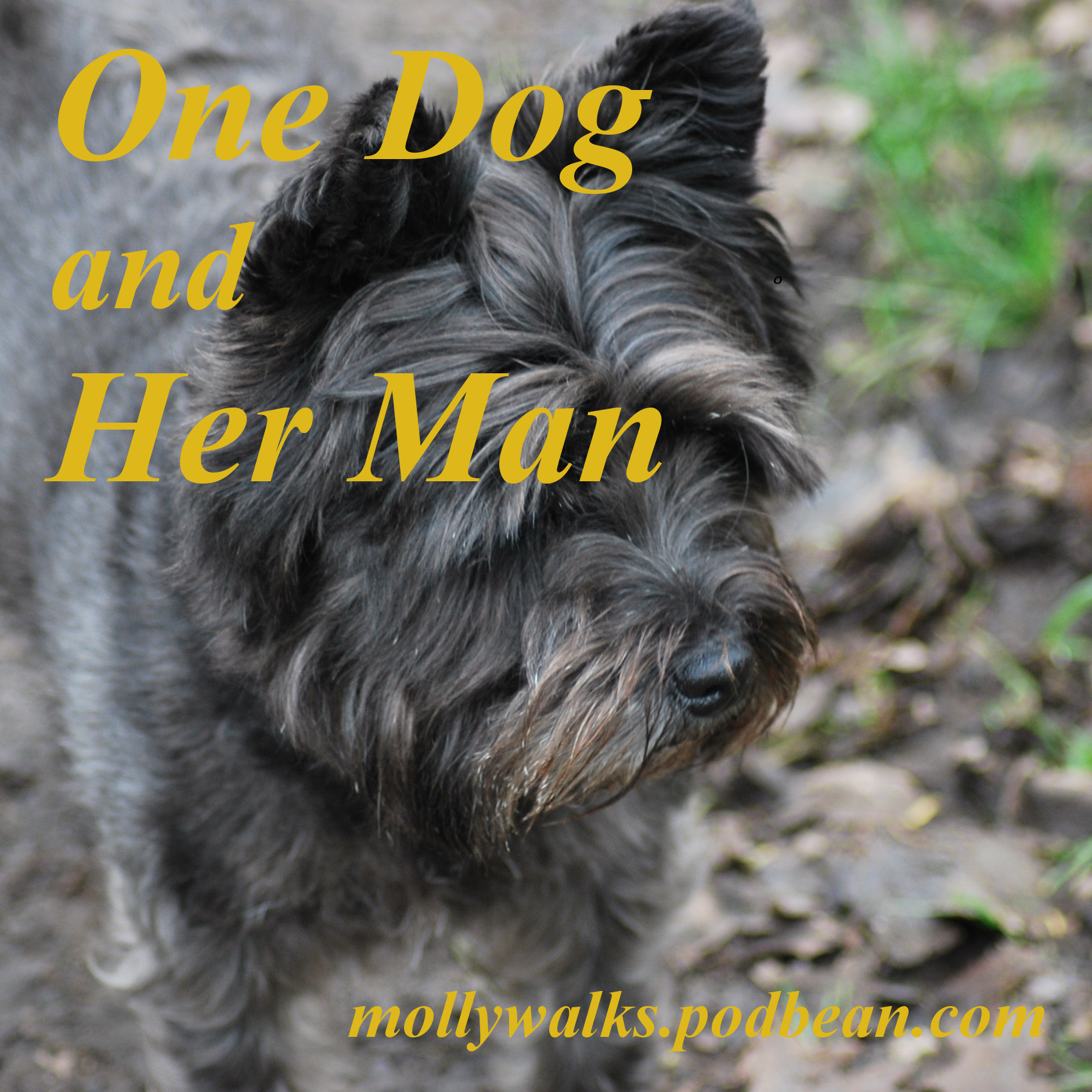 One Dog and Her Man