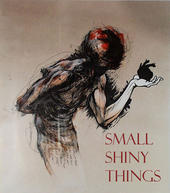 Small Shiny Things Audio Journal
