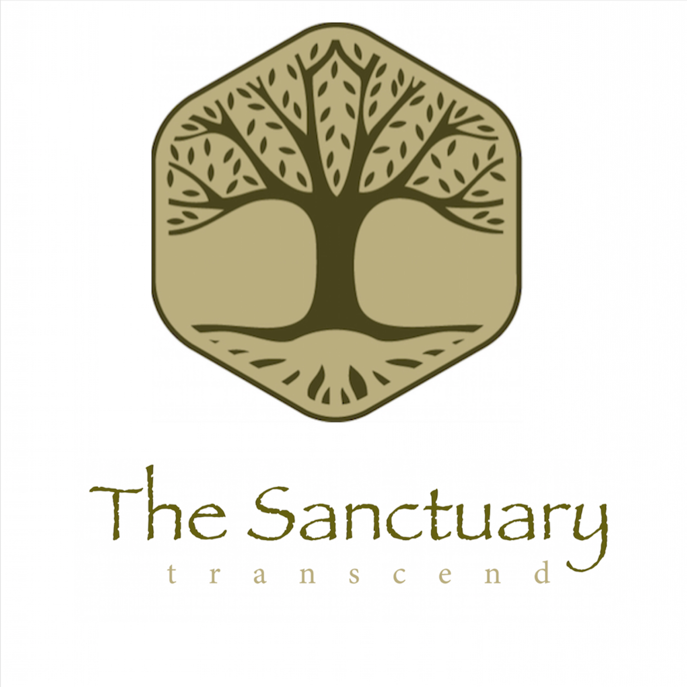 The Sanctuary, Shamanic Healing Center