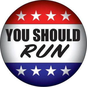 You Should Run Juli Briskman Virginia