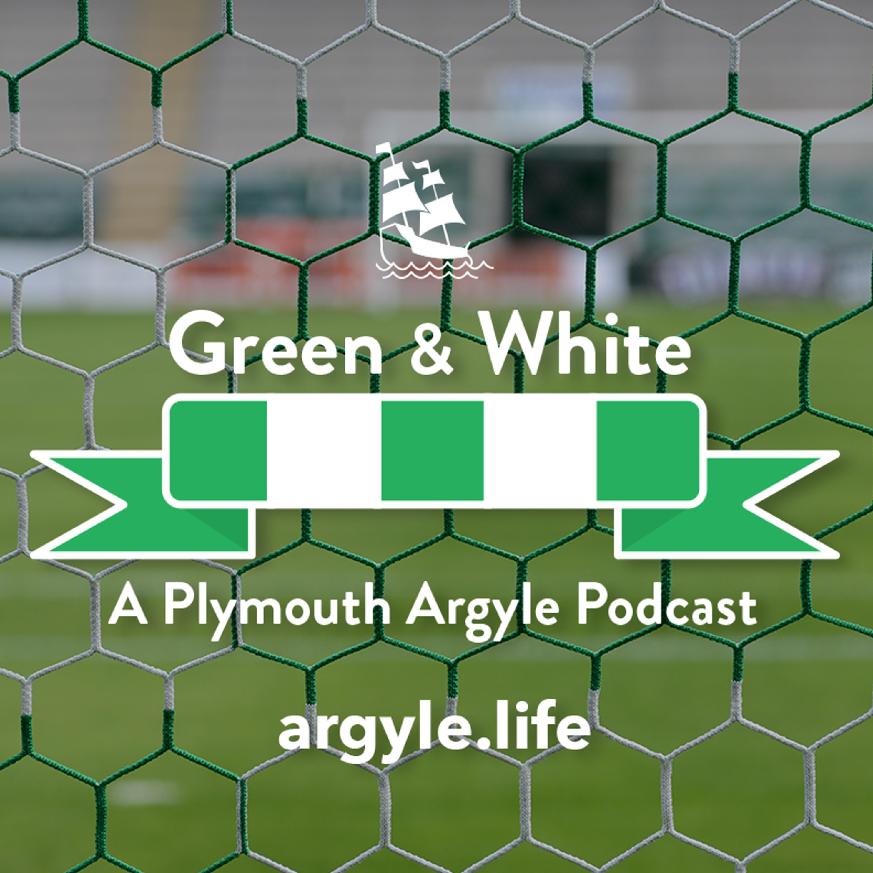 Green & White: Plymouth Argyle v Sunderland