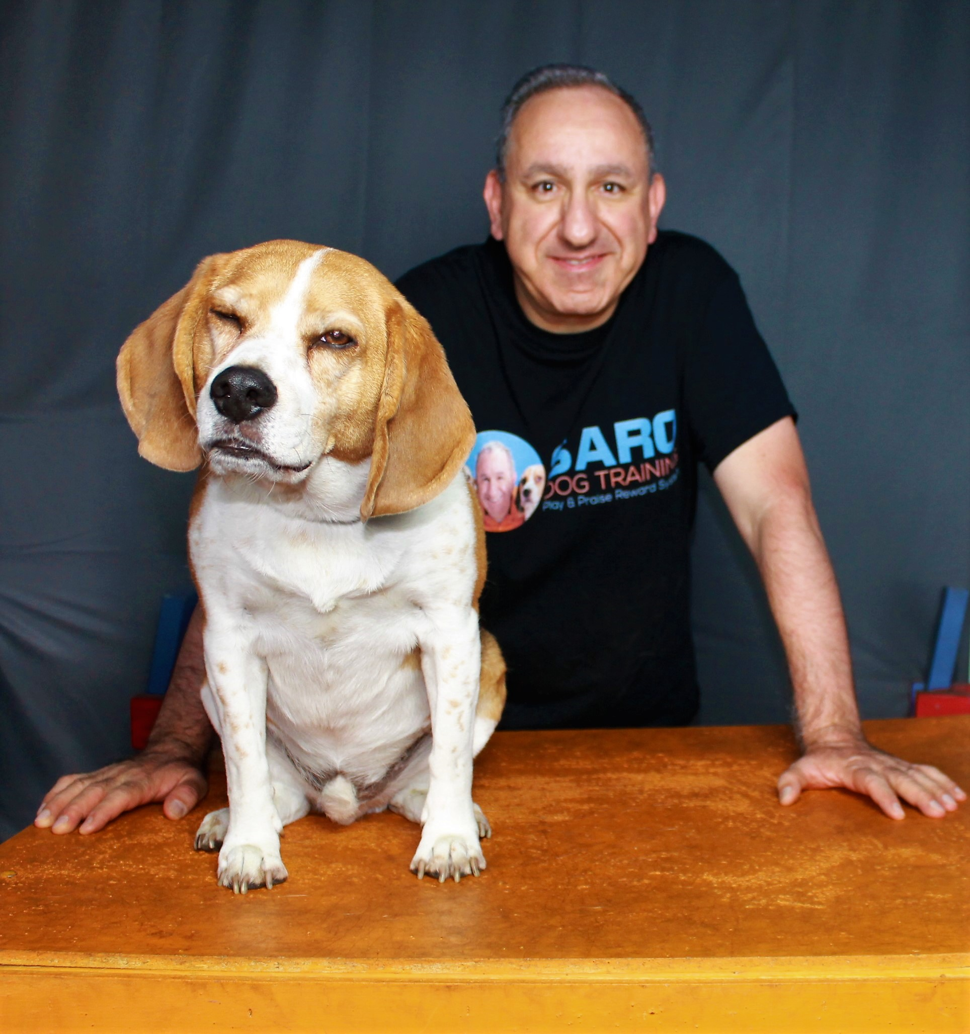 Saro Dog Training's Podcast