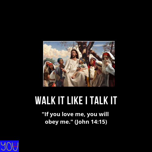 Download Walk It Like I Talk It: Living out the Teachings of