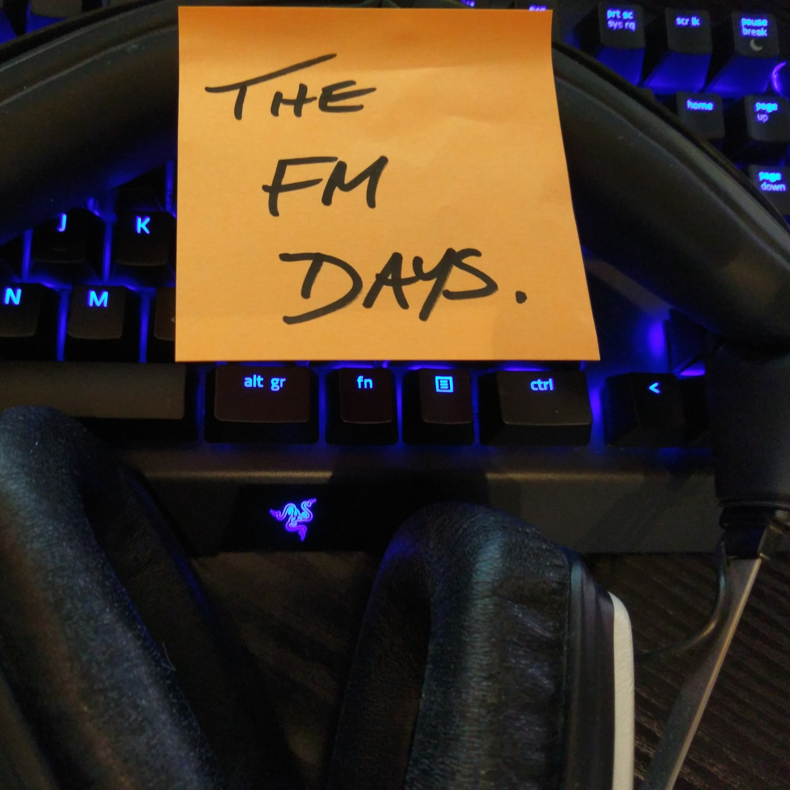 The FM Days Podcast