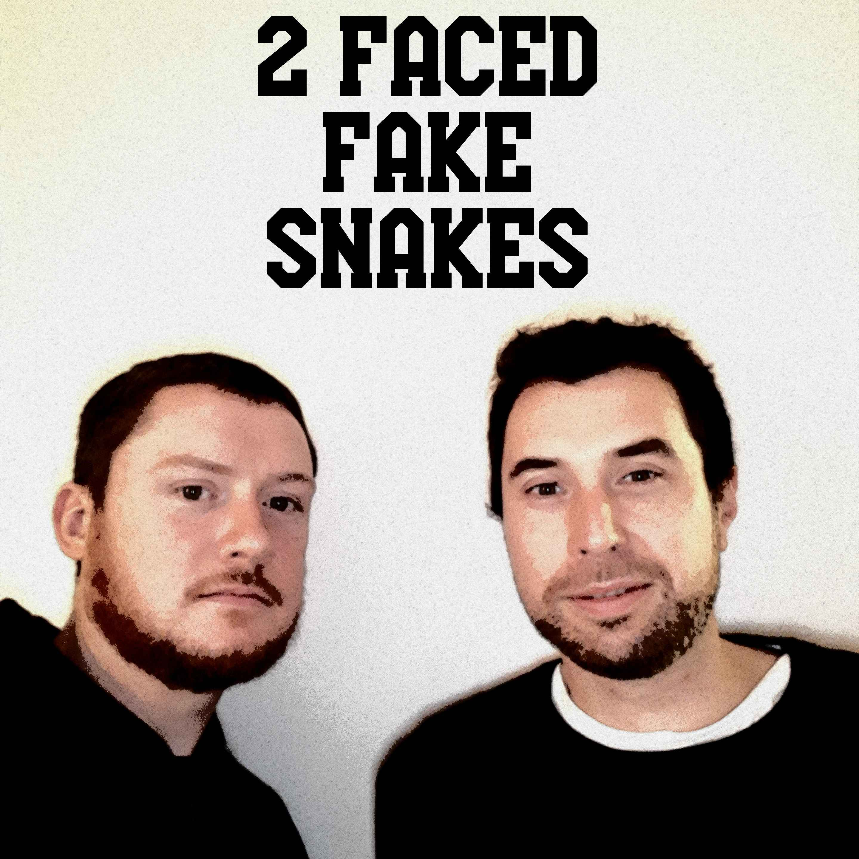 2 Faced Fake Snakes