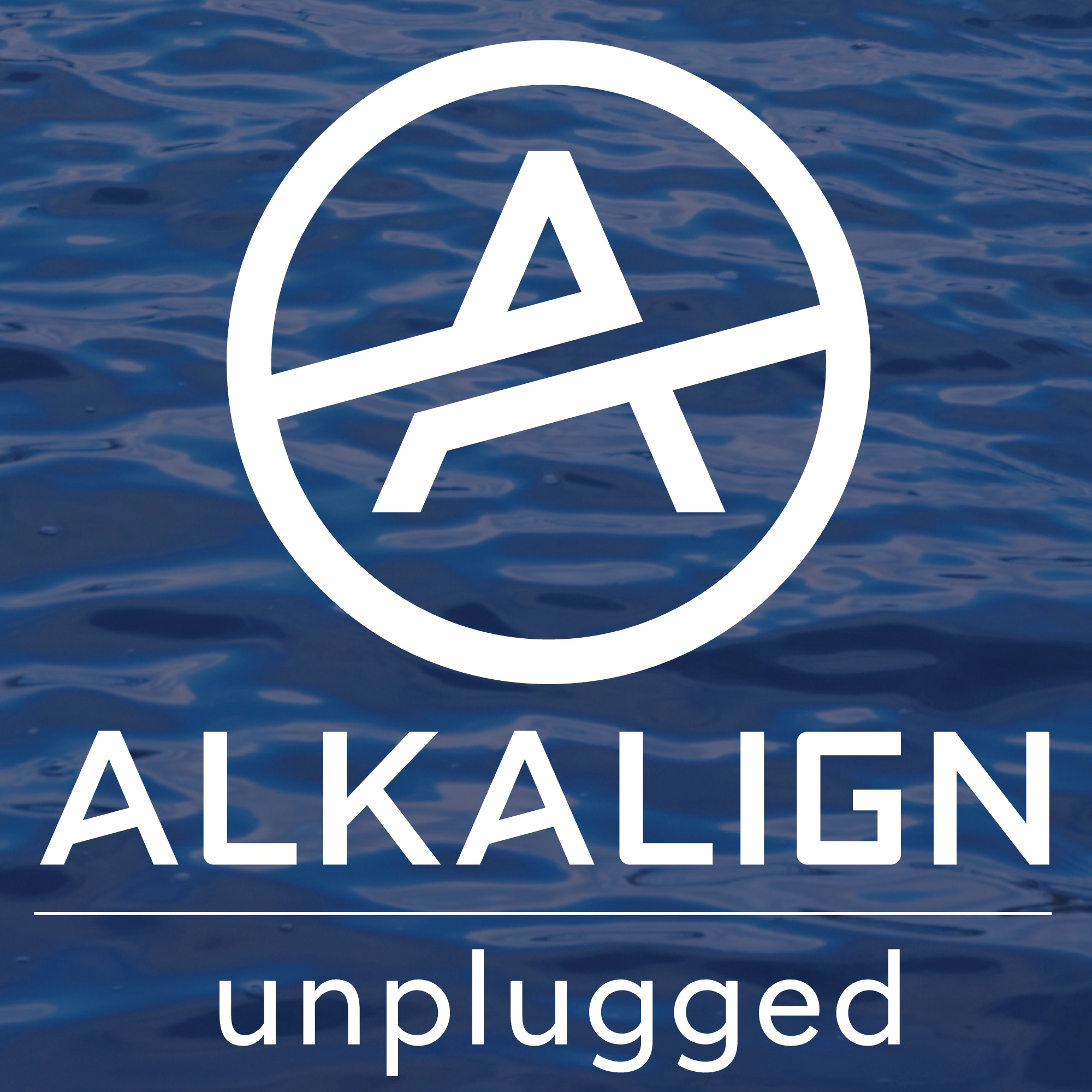 Episode 1: Alkalign Founder and CEO, Erin Paruszewski