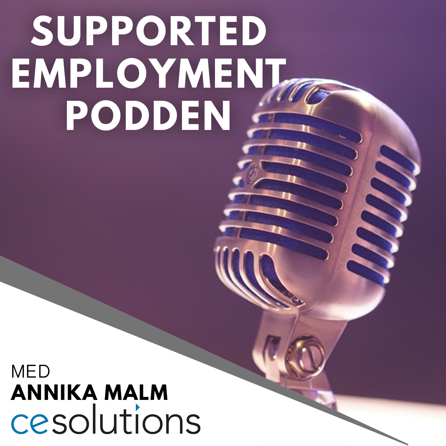 Intro - Supported Employment podden