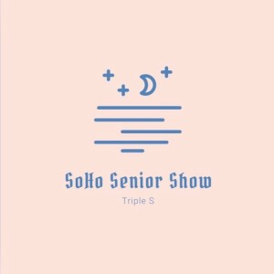 The thesohoseniorshow's Podcast
