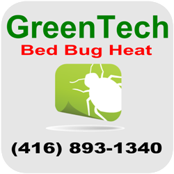 Bed Bug Exterminator Toronto Heat