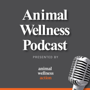 The Animal Wellness Podcast