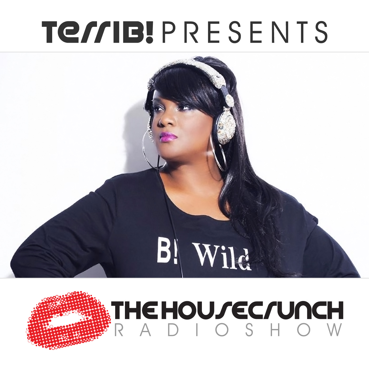 The HouseCrunch Radio Show Episode #221 Terri B! In the Mix