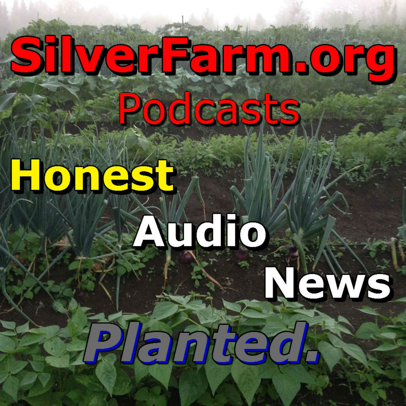 SilverFarm Honest Audio News