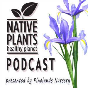 Native Plants, Healthy Planet presented by Pinelands Nursery