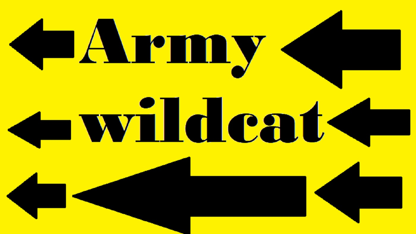 armywildcat