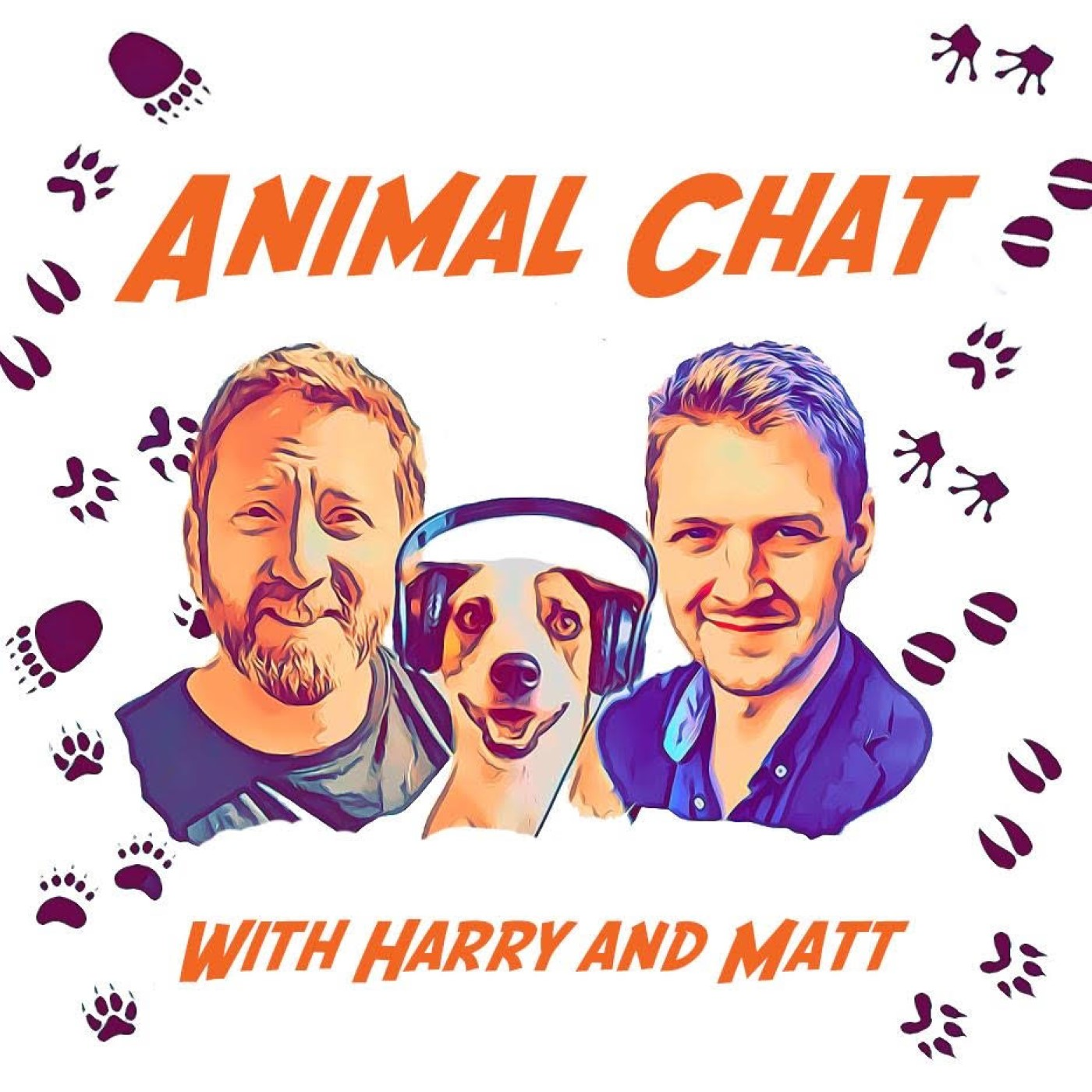 S2 E3 - Animal Chat with Jill Robinson