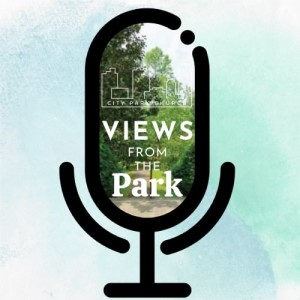 Views From The Park Podcast