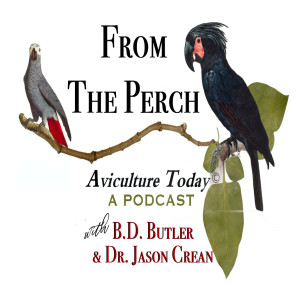 From The Perch - Aviculture Today