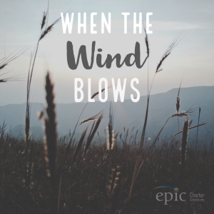 The whenthewindblows's Podcast