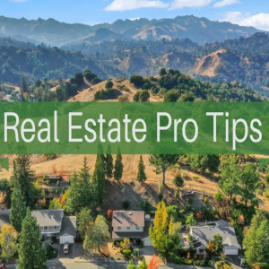 Real Estate Pro Tips