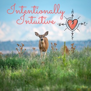 The Intentionally Intuitive Podcast